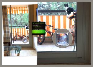 chatière sur verre